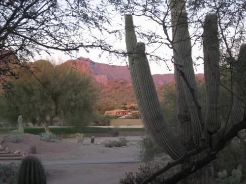 sunset at gold canyon 1