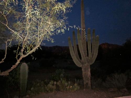 Night time in Gold Canyon Arizona