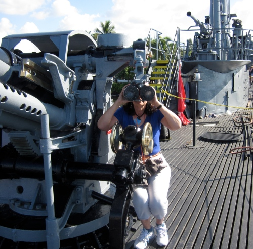 guns on the deck of the bowfin