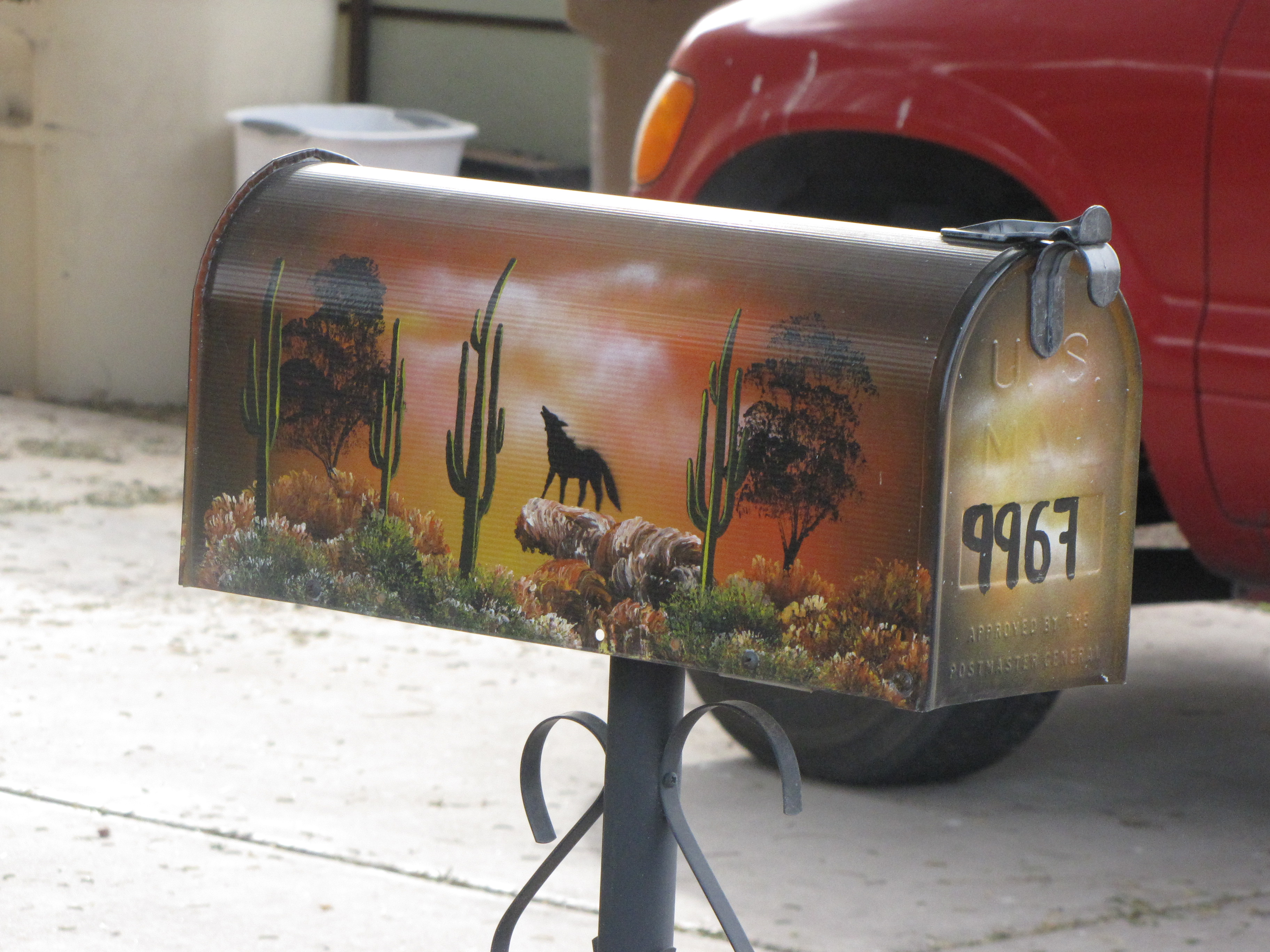 Coyote Mailbox What Next