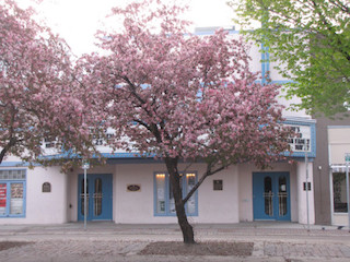 cherry tree broadway saskatoon