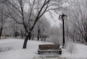 stephen juba park winnipeg winter