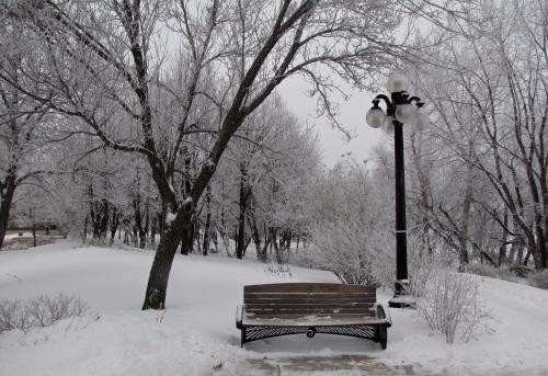 stephen juba park winnipeg winter
