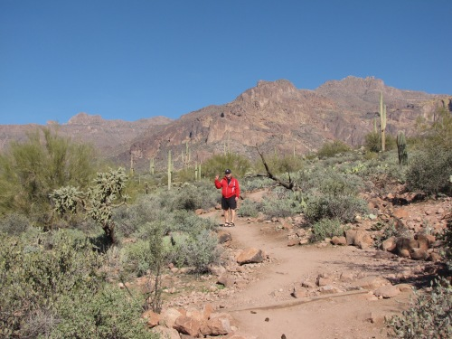 hieroglyphic trail canyon arizona