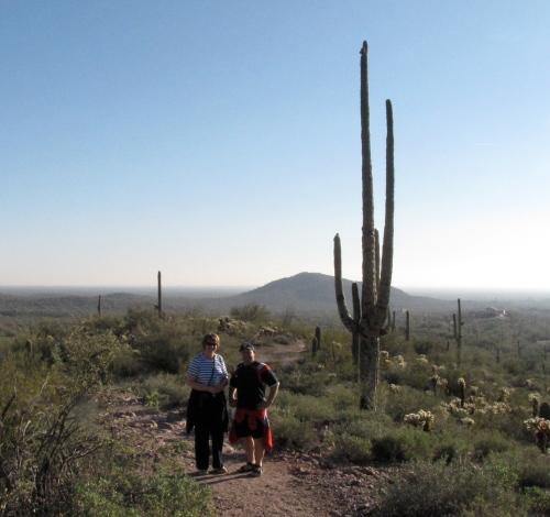 on the hieroglyphic trail gold canyon arizona