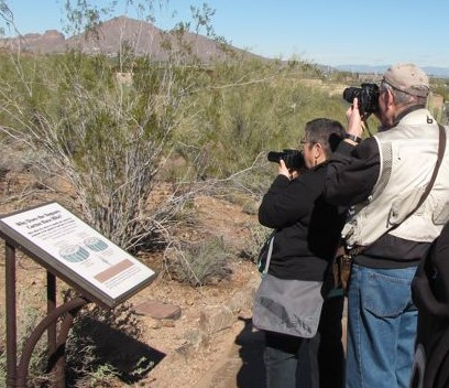 photographers at phoenix desert botanical garden