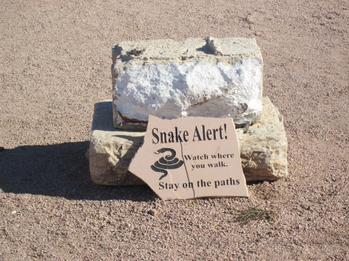 watch out for snake signs superstition mountain museum