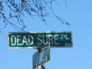 dead sure place street sign gold canyon arizona