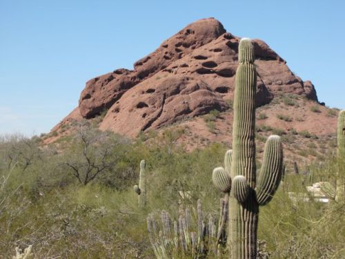 papago butte looks like a turtle