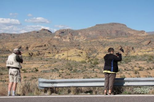 photographers tonto national forest