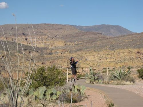 fisher scenic point apache trail tonto forest