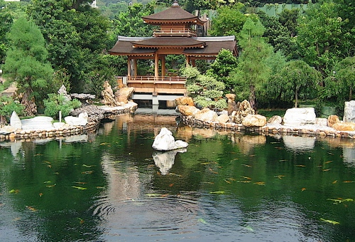 chi lin nunnery pond hong kong