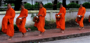 monks begging at dawn in luang prabang