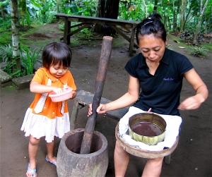 cocoa plantation bali
