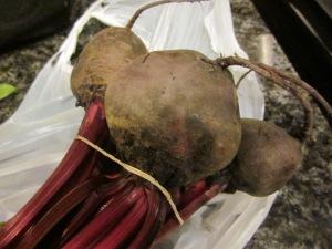 fresh beets farmer's market