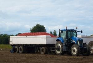 tractor and tomato wagon