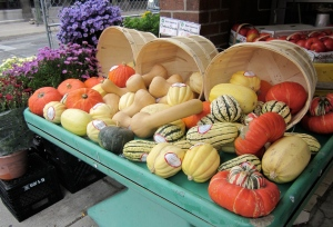 squashes for sale