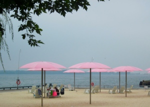 pink umbrellas on the waterfront in toronto