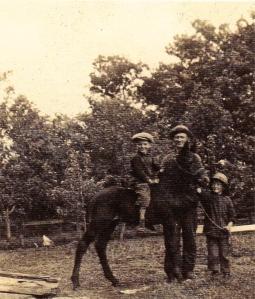 dad rides a pony