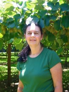 in the kiwi vineyard