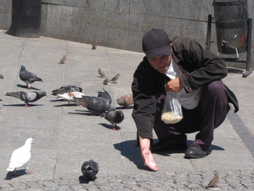 Man Feeding the Birds