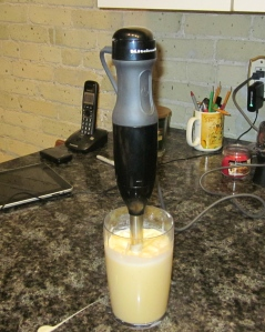 kitchen aid immersible blender