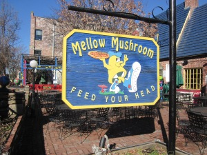 mellow mushroom asheville north carolina