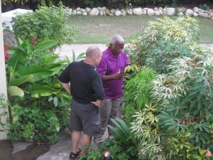 Tony shows Dave some of the flowers and plants he cares for on the beautiful grounds of the Morning Glory Bed and Breakfast