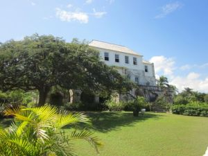 rose hall jamaica