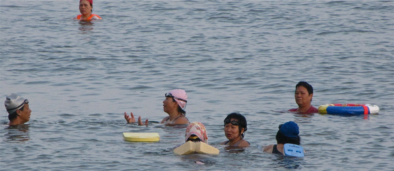 The Swimmers Of Tolo Harbor What Next