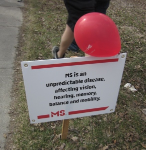 information about ms