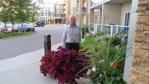 dad coleus plant