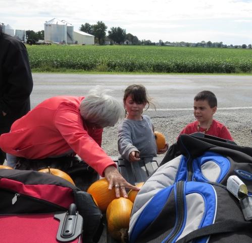 pumpkins in the truck