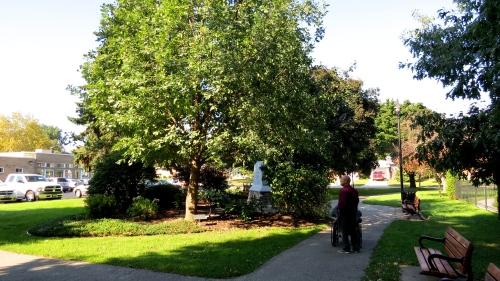 chortiza oak