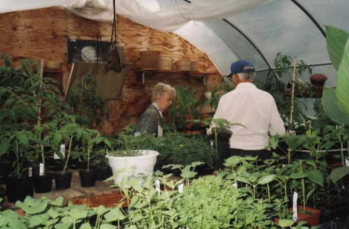 mom and dad in greenhouse