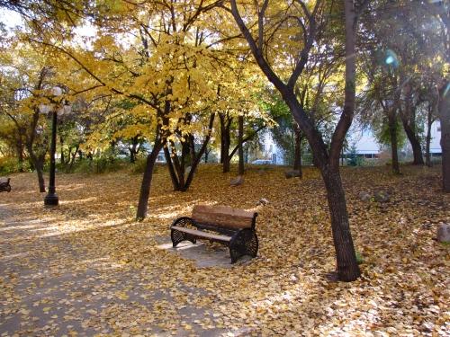 Park Bench - Photo taken in Steve Juba Park October 2012