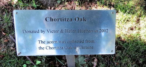 chortitza oak donation plaque