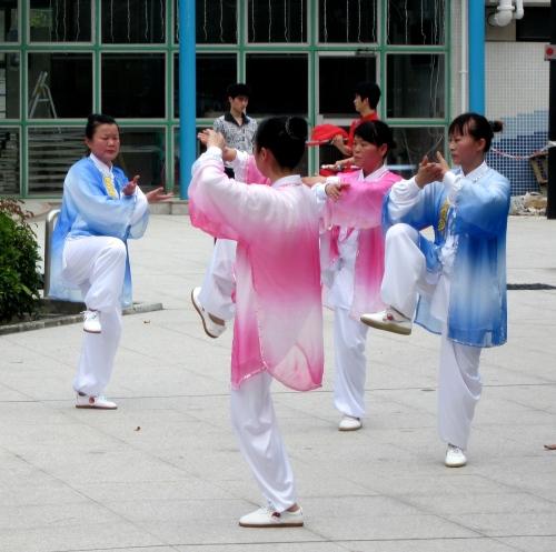 wu shu performers