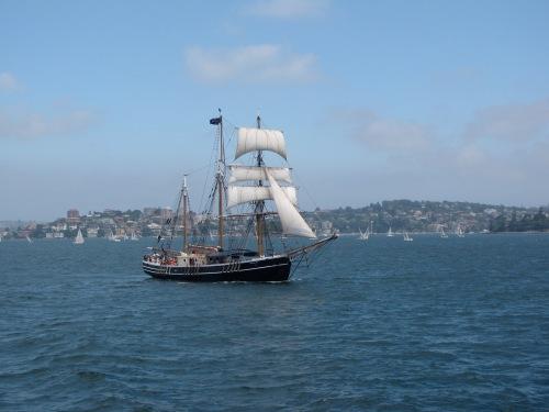 ship in the sydney harbor