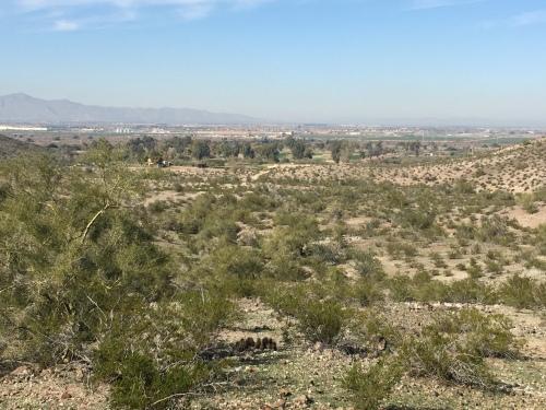city view quail trail