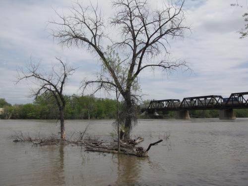 winnipeg river in spring