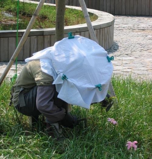 gardener in hat hong kong