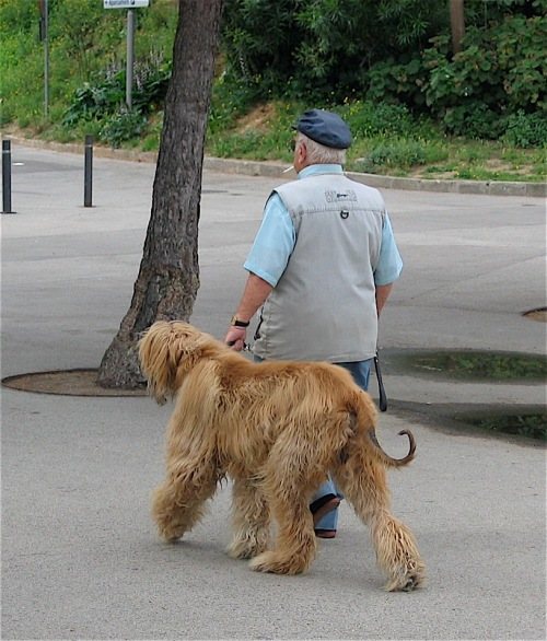 A man and his dog photographed in Barcelona