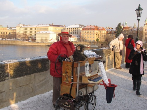 organ grinder in prague