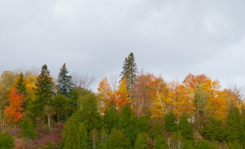 fall-colors-quebec