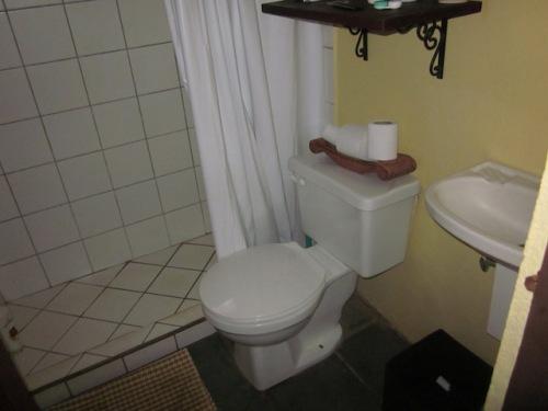 bathroom-casa-chameleon