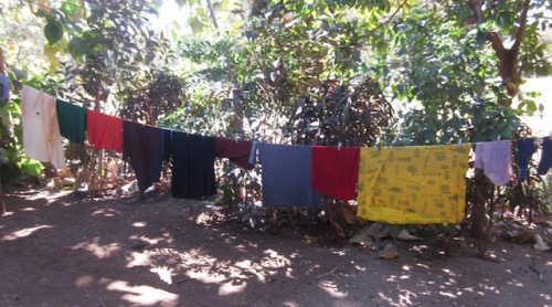 clothes-line-casa-chameleon