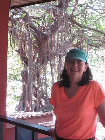 under-a-banyan-tree
