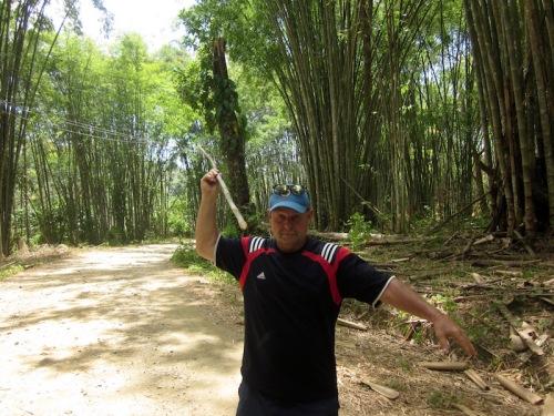 dave bamboo pole vault