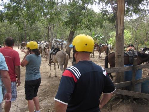 dave-horses-costa-rica